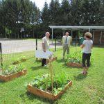le jardin, support d'activités sensorielles